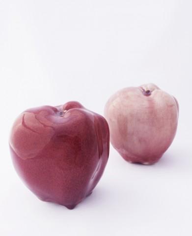 apple breeder  - 6324