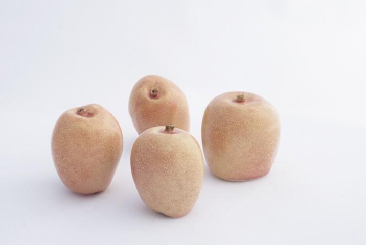 apple breeder  - 6325
