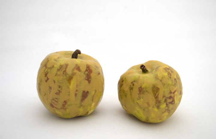 apple breeder  - 6329