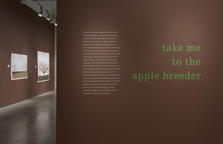 apple breeder PMCA install