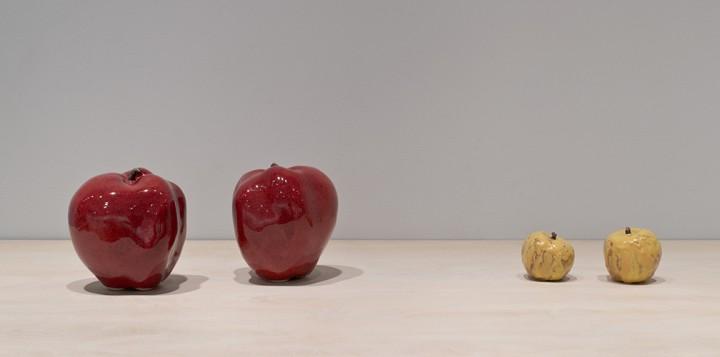 14. apple breeder PMCA install (Deacon Jones-drap d'or)