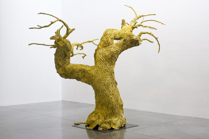 Tree-Peel-full-front-copy